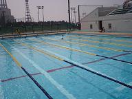 07町民水泳大会.JPG