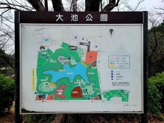 大池公園.jpg