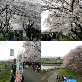 海蔵川.jpg
