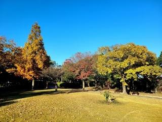 緑地公園.jpg