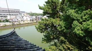 西北隅櫓からの眺め.jpg